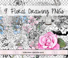 Floral Drawing PNGs