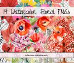 Watercolor Floral PNGs