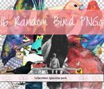 Random Bird PNGs