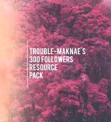 300 Followers Pack