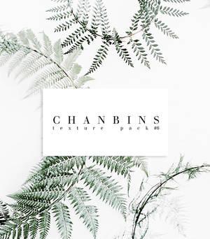 Chanbins Texture Pack #6