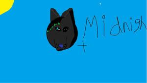 Midnight Wink :D