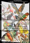 birds png*18