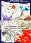 PNG-Wonderland