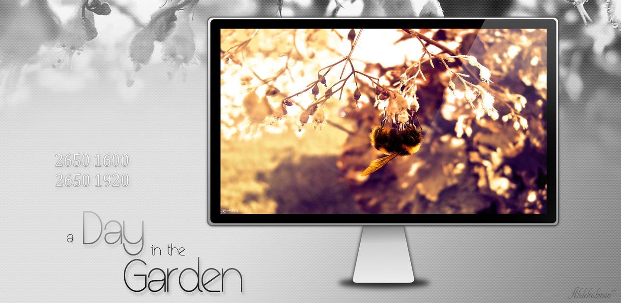 حزمة خلفيات a day in the garden