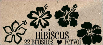 Hibiscus PS brushes by daintyish
