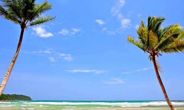 dreamscene beach HD1080p