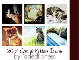 Cat and Kitten Icons by jadedlioness
