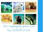 Endangered Species Animal icons