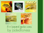 Leopard Gecko icons