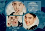 D.O EXO #29 - PNGS