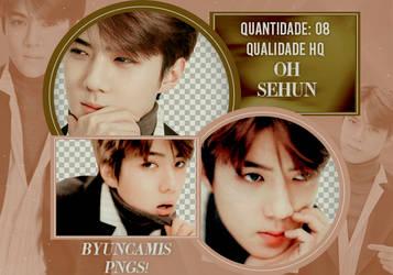 Sehun EXO #34 - PNGS by fairyixing