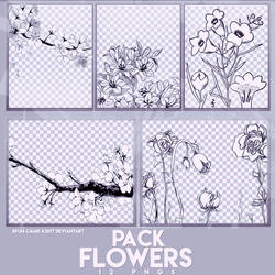 PACK PNGS: Flowers Draw | ByunCamis by fairyixing