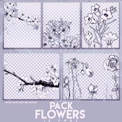 PACK PNGS: Flowers Draw | ByunCamis