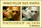 Orange Yellow Bulb Remover