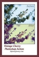 Vintage Cherry Photoshop Action by ibjennyjenny