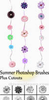 16 Free Summer Flowers Photoshop Brushes + Cutouts
