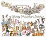 Bunny Photoshop Brushes For Easter