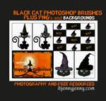 Black Cat Photoshop Brushes Bundle