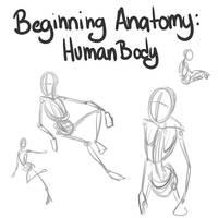 Beginning Anatomy Human body by Iriadescent