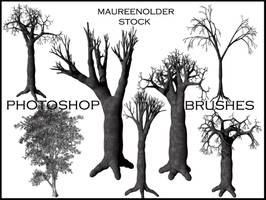 STOCK PHOTOSHOP BRUSHES tree by MaureenOlder