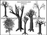 STOCK PHOTOSHOP BRUSHES tree