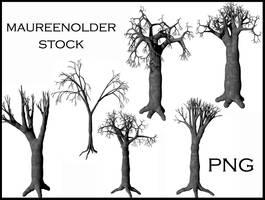 STOCK PNG tree by MaureenOlder
