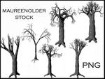 STOCK PNG tree
