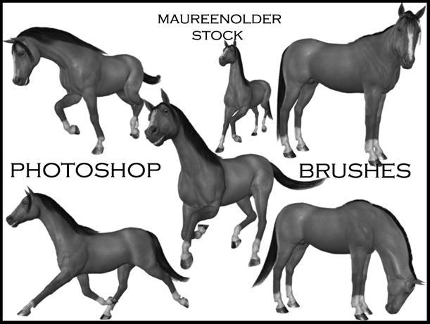 STOCK PHOTOSHOP BRUSHES horse by MaureenOlder