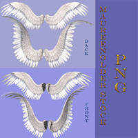 STOCK PNG wings set1 by MaureenOlder