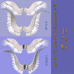 STOCK PNG wings set1