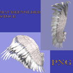 STOCK PNG wings set 2