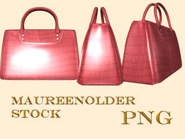 STOCK the hand bag 3 by MaureenOlder
