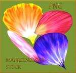 STOCK PNG petals