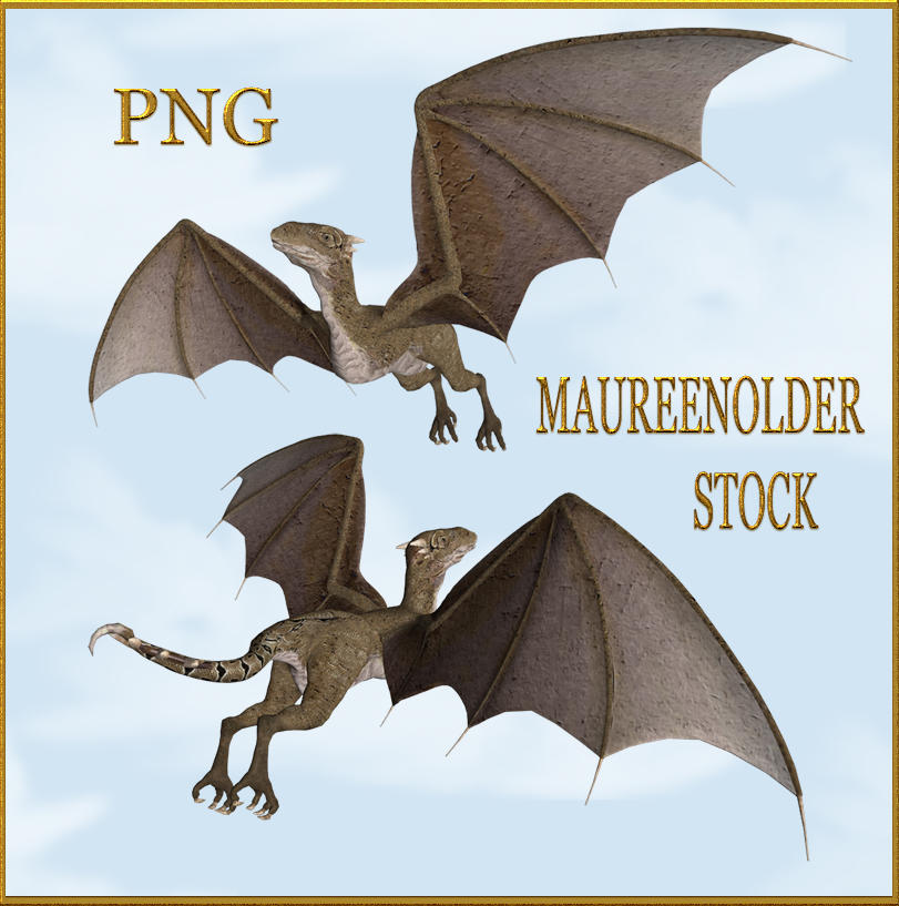 STOCK PNG wyvern in flight by MaureenOlder