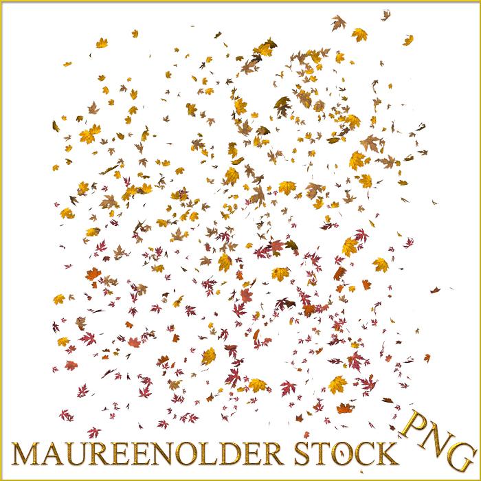 STOCK PNG leaf scatter by MaureenOlder