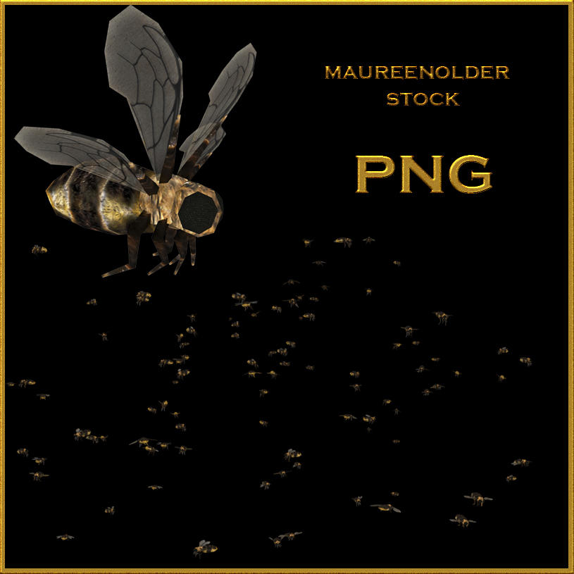 STOCK PNG buzzzzzbeesszz by MaureenOlder
