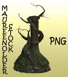 STOCK PNG tree column