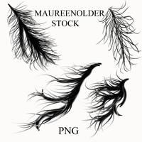 STOCK PNG windy rainy hair by MaureenOlder