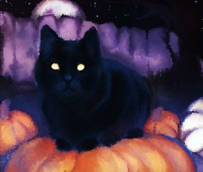 Spooky kitty cat!