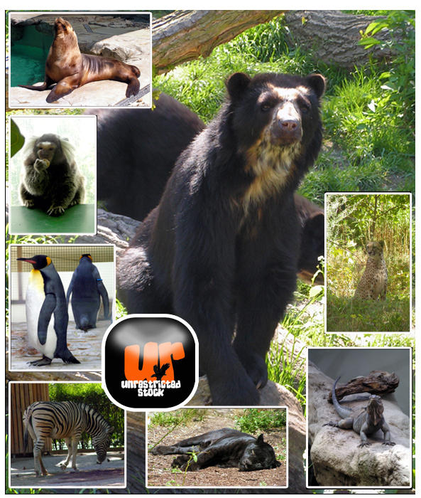 Wild Beasts Pack by Unrestricted-Stock