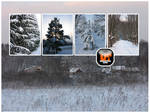Winter Stock Pack 1 by Unrestricted-Stock