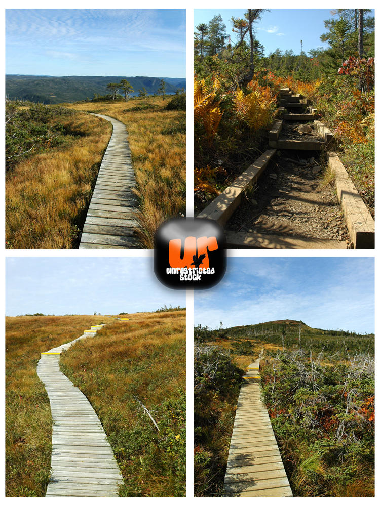 Unrestricted Paths Stock by Unrestricted-Stock