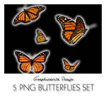 5 PNG Butterflies
