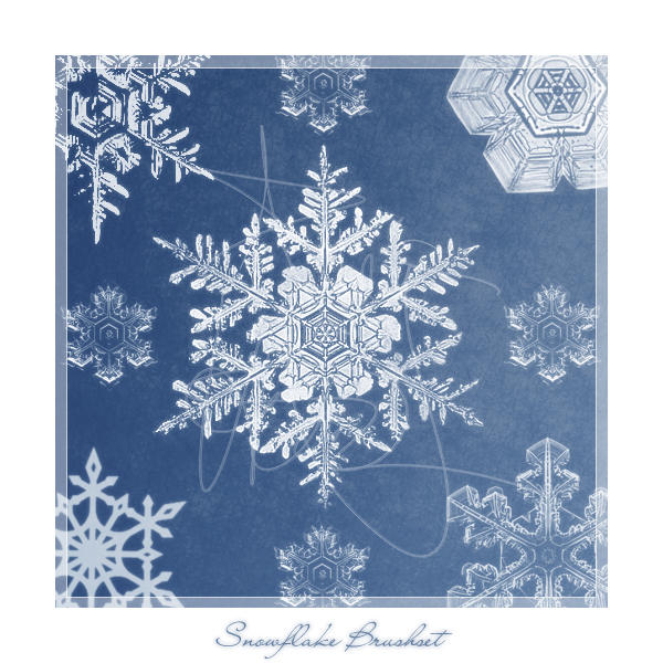 snowflake brushes by meldir