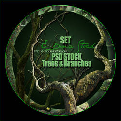 PSD Stock Set - Trees and Branches