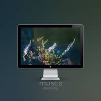 Musco by ASIAONLY