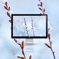Sprig by ASIAONLY