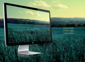 Nature wallpaper by NickchouBG