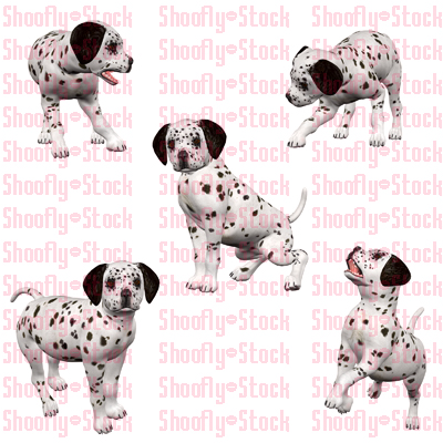 Dalmatian Puppies Stock 1 by Shoofly-Stock